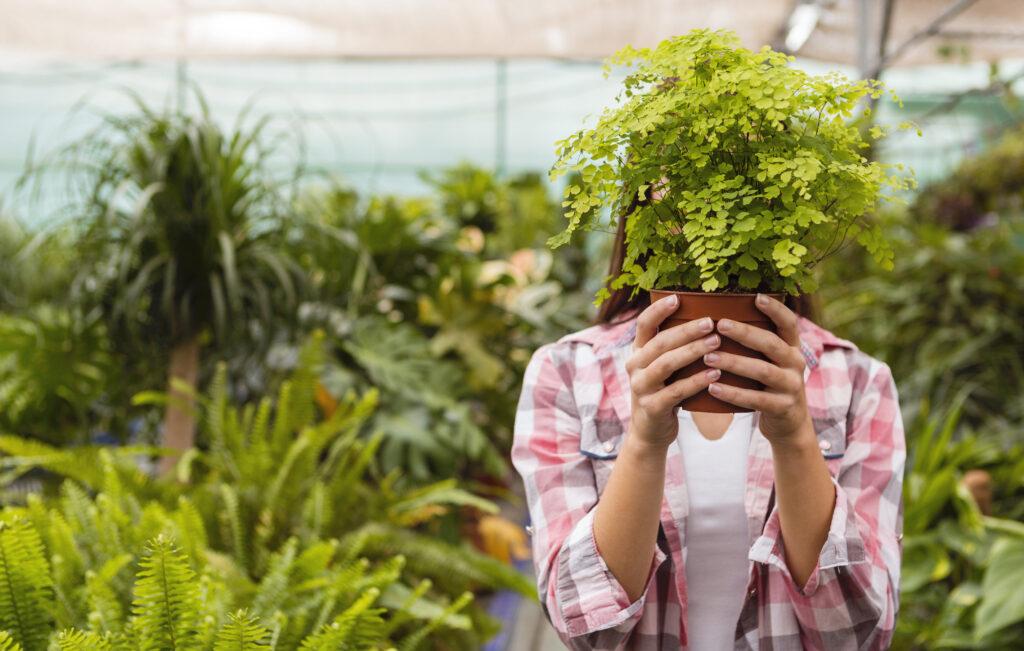 سلامت مغز با نگهداری گیاهان در خانه - جیم کویک Jim Kwik